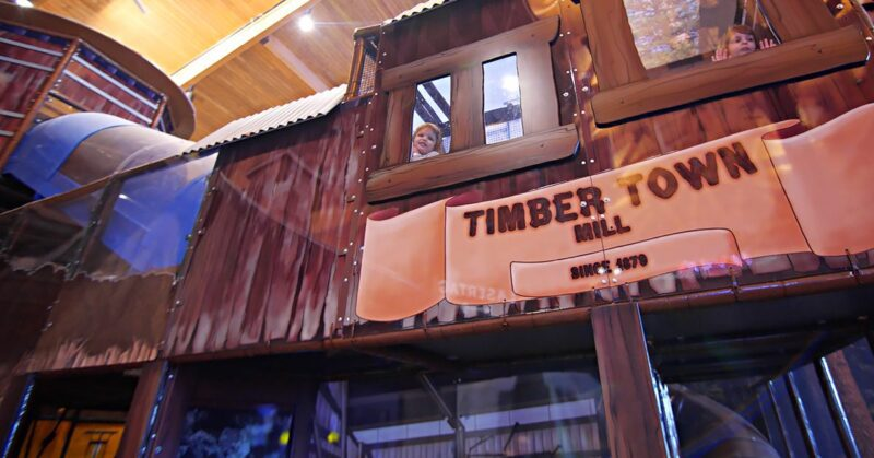 LangersEntertainment_TimberTown_06